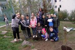 Projekt Edukacyjno-artystyczny WSADZAWKA - Szkolny Sad